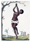 The engraving shows a woman hanging from a tree with deep lacerations; in background two white men and two black men, the latter with whips. Stedman witnessed this punishment in 1774.<br/><br/>  The woman being whipped was an eighteen-year old girl who was given 200 lashes for having refused to have intercourse with an overseer. She was 'lacerated in such a shocking manner by the whips of two negro-drivers, that she was from her neck to her ancles literally dyed with blood'.