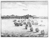 The Dutch East India Company (VOC) was set up in 1602 to gain a foothold in the East Indies (Indonesia) for the Dutch in the lucrative spice trade, which until that point was dominated by the Portuguese.<br/><br/>  It was a chartered company granted a monopoly by the Dutch government to carry out colonial activities in Asia, including establishing colonies in Ceylon (Sri Lanka) and India.