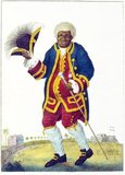 Kwasimukamba or Graman Quassi (also spelled Quacy, Kwasi and Quasi) (ca. 1690 - ca. 1780) was a Surinamese healer, botanist, slave and later freedman of the 18th century, who is today best known for having given his name to the plant species <i>quassia</i>.<br/><br/>  Kwasi's roots were among the Kwa speaking Akan people of present day Ghana, but as a child he was enslaved and brought to the New World. As a slave in Suriname, a Dutch colony in South America, he participated in the wars against the Saramaka maroons as a scout and negotiator for the Dutch, and he lost his right ear during the fighting. For this reason the Surinamese maroons remember him as a traitor.<br/><br/>  Kwasi worked as a healer of some renown, and fared so well that he was able to get his freedom and travel to the Netherlands. One of his remedies was a bitter tea that he used to treat infections by intestinal parasites, this concoction was based on the plant <i>Quassia amara</i> which Carolus Linnaeus named after him, as the discoverer of its medicinal properties. Quassia continues to be used in industrially produced medicines against intestinal parasites today.