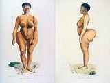 Saartjie 'Sarah' Baartman (before 1790 – 29 December 1815) was the most famous of at least two Khoikhoi women who, due to their large buttocks (steatopygia), were exhibited as freak show attractions in 19th-century Europe under the name Hottentot Venus. 'Hottentot' was the then current name for the Khoi people, but is now considered an offensive term.