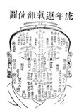Face Reading is one of the most ancient tools used for diagnosis in Chinese Medicine. Because palpation of the body was not a common practice, especially when treating women, the face became one of the easiest places to access the signs of internal organ function.<br/><br/>  In the oldest manuscript of acupuncture ever discovered so far, Dr. Paul Unschuld of Germany found that the first page of this manuscript was a facial map containing 150 age positions while the second page was a diagram of the facial meridians. This same facial map is still in use today and is used to find the ages when trauma occurred that still affects current psychological and physical health. This map can best be described as a topographical representation of life experience.