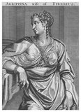 Vipsania Agrippina (36 BCE - 20 CE) was betrothed to Tiberius by her father, Marcus Vipsanius Agrippa, and Octavian before her first birthday. They were married in 19 BCE. Their son, Drusus Julius Caesar, was born in 14 BCE. However, Tiberius was forced to divorce Vipsania and marry Augustus' daughter, Julia the Elder, in 11 BCE, an action that he never ceased to regret all his life. She was remarried to senator Gaius Asinius Gallus Saloninus that same year, with whom she had at least six sons. Vipsania eventually passed away in 20 CE.