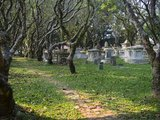 Established in 1786, the Old Pretestant Cemetery (also known as Northam Road Cemetery), is a disused Christian cemetery in George Town, Penang, Malaysia.<br/><br/>  The cemetery is of significant historic interest: it is older than many better-known burial grounds such as Père Lachaise in Paris, Powązki in Warsaw, the Zentralfriedhof in Vienna, and Highgate Cemetery in London. It is also 35 years older than the Old Protestant Cemetery in Macau. In 2012, conservation works were undertaken to protect and preserve the site, although there was some concern about how the restoration was done.
