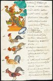 Four roosters, each representing one quarter of the year, with a male <i>yaksa</i> as 'avatar' of the birthplace with a unique waist cloth, a plant and a number diagram determining the lucky and unlucky numbers for people born in the year of the rooster.<br/><br/>  This manuscript was rescued from a burning temple in Rangoon.
