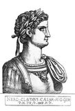 Born Lucius Domitius Ahenobarbus, Nero was the only son of Agrippina the Younger, who would later marry his great-uncle Emperor Claudius. Claudius adopted Nero and was made heir and successor alongside Claudius' own son Brittanicus. Nero acceded to the throne after Claudius' death in 54 CE, possibly poisoned at the hands of Nero's mother.<br/><br/>  Nero's reign is infamous for his corruption, tyranny and extravagance, as well as his many executions, including that of his mother and the poisoning of his stepbrother Britannicus soon after the start of his rule. His most infamous mark on history however, is his presumed starting of the Great Fire of Rome in 64 CE, which caused widespread destruction and was intentionally done to clear space for Nero's planned palatial complex, the Domus Aurea.<br/><br/>  In 68 CE, Nero was driven from the throne by rebellion, and he committed suicide that same year. With his death came the the end of the Julio-Claudian dynasty, leading to the tumultuous period known as the Year of the Four Emperors.